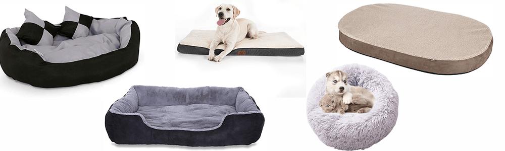 ᐅMeilleur coussin anti stress pour chien: Comparatif 5 meilleurs coussins pour chien