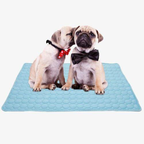 tapis rafraîchissant pour chien - tapis refroidissement chien_