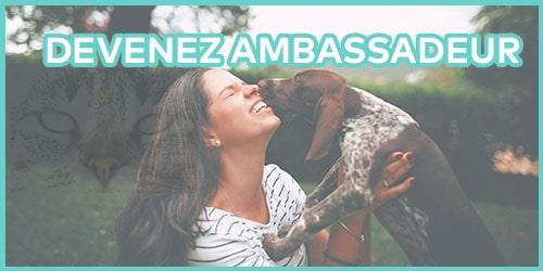 devenez_ambassadeur daisypets pour chien et chat