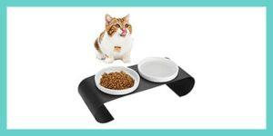gamelle pour chat en ceramique
