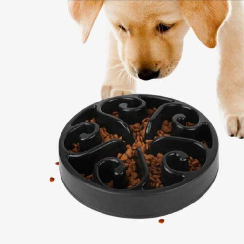 gamelle anti-glouton pour chien et chat_
