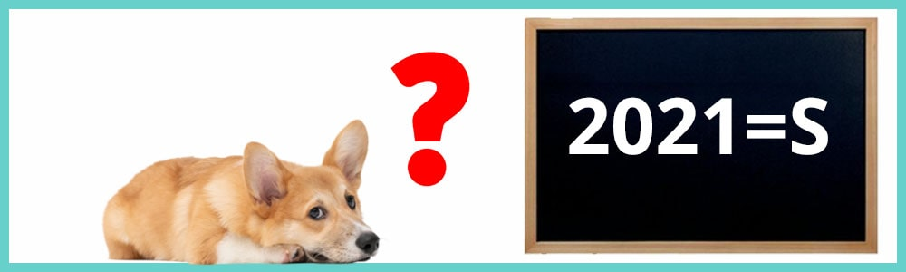Les meilleurs noms de chiens en 2021