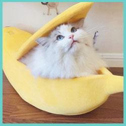 panier banane chat - lit banane chat 5