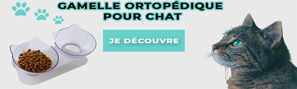 Daisypets_gamelle orthopédique pour chat_1000x400