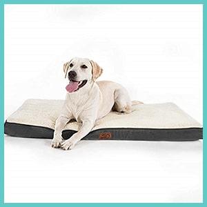 coussin orthopédique pour chien grande taille