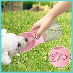 gourde pour chien rose - gourde portable pour chien rose