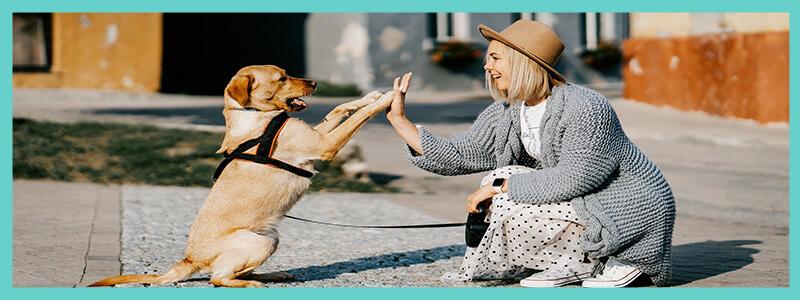 femme qui joue avec son chien