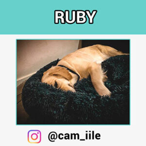 ruby-coussin-apaisant_
