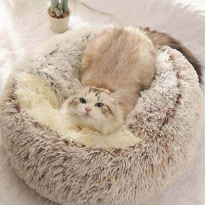 coussin fluffy pour chat beige