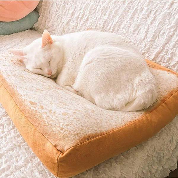 Coussin toast pour chat