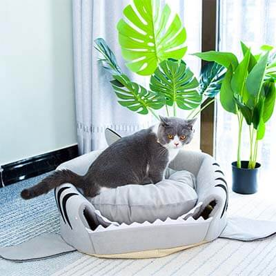 panier requin chat 1
