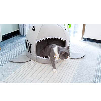 panier requin chat 3