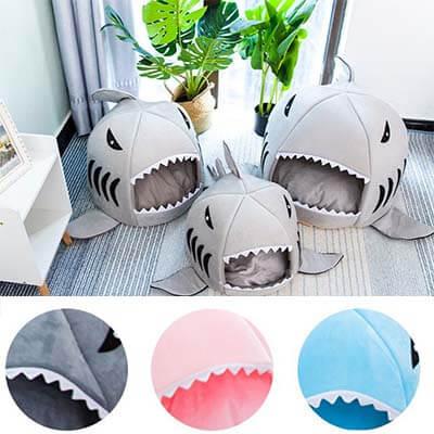 panier requin chat couleurs